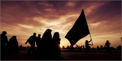 Pakistani Shias to Set Up Arbaeen Moukeb in Iraq